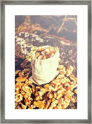 Sack Of Country Walnuts Framed Print by Jorgo Photography - Wall Art Gallery