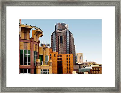 Framed Print featuring the photograph Sacramento Bird Go Round by Larry Darnell