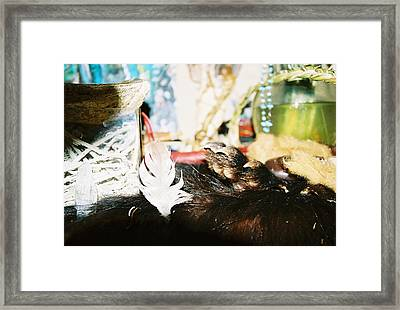 Framed Print featuring the photograph Sacred Bear Claw Medicine by Kicking Bear  Productions