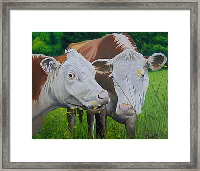 Sacred Cows Framed Print by Ferrel Cordle