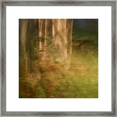 Sacred Grove Framed Print
