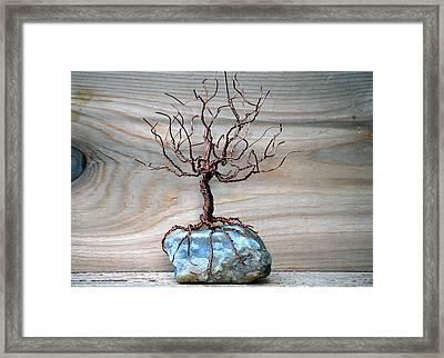 Sacred Oak Framed Print