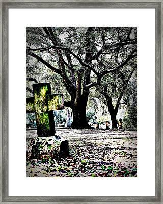 Sacred Rest Framed Print by Jill Tennison