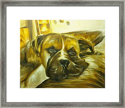 Sad Boxer Framed Print by Austin Howlett