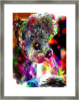 Sad Dog Framed Print by James Thomas