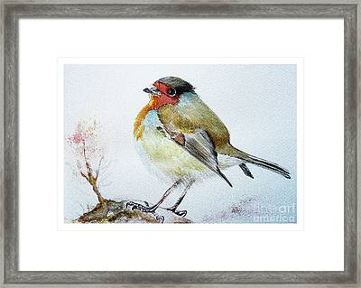 Sad Robin Framed Print by Jasna Dragun