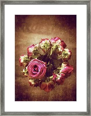 Sad Roses Framed Print by Svetlana Sewell
