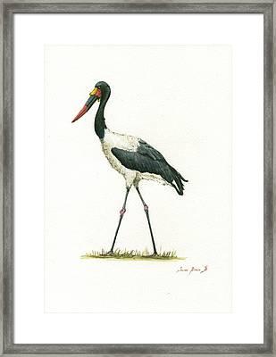 Saddle Billed Stork Framed Print
