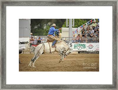 Saddle Bronc Framed Print by Dennis Hammer