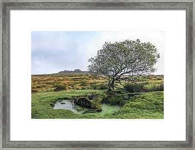 Saddle Tor - Dartmoor Framed Print