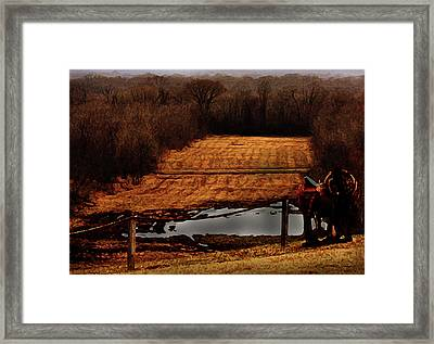 Saddle Up Enjoy The View Framed Print by Kim Henderson
