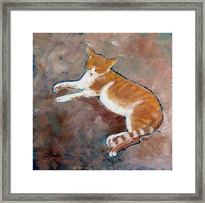 Saddle Tramp- Ranch Kitty Framed Print