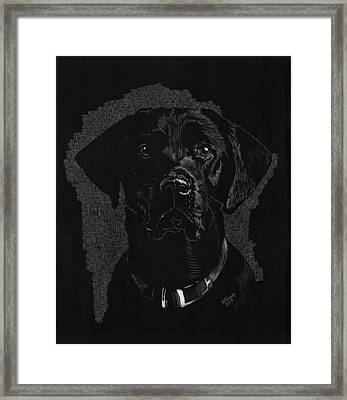 Sadie Framed Print by Norma Rowley