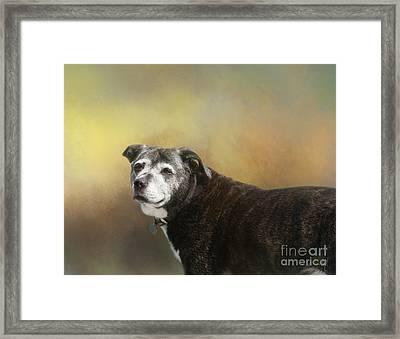 Sadie Framed Print
