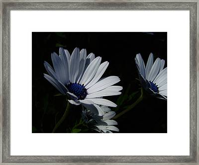 Sadness And Yearning Framed Print
