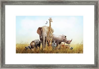 Safari Animals In Africa Composite Framed Print