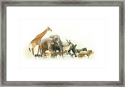 Safari Animals Walking Side Horizontal Banner Framed Print