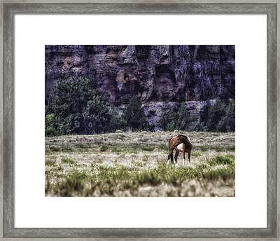 Safe In The Valley Framed Print