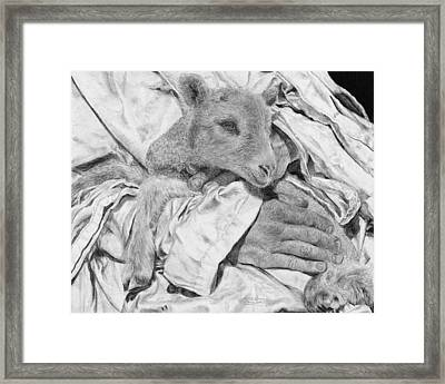 Safe Framed Print by Jyvonne Inman