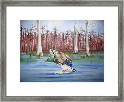 Safe Landing Framed Print by Belinda Lawson