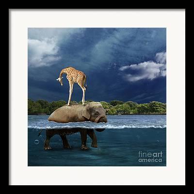 Surreal Landscape Photographs Framed Prints