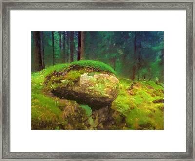 Saga Woods Framed Print