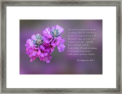 Sage Blossoms Philippians 4 Vs 6-7 Framed Print by Linda Phelps