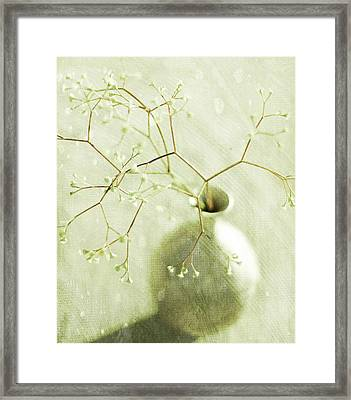 Sage  Framed Print by Linde Townsend