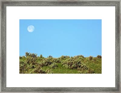 Sage Moon Framed Print by Todd Klassy