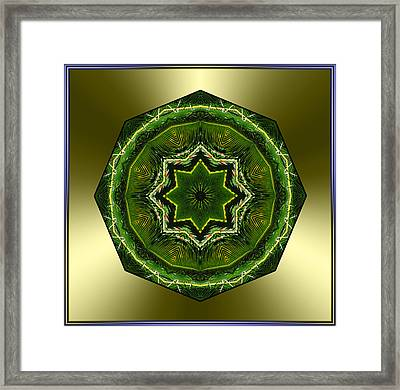 Sago Palm Star Framed Print
