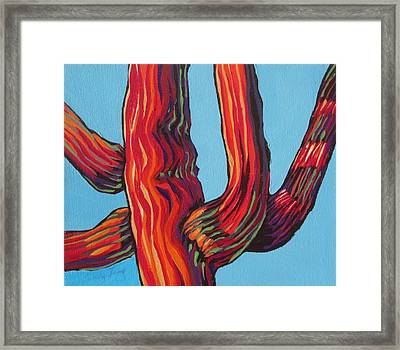 Saguaro 2 Framed Print by Sandy Tracey