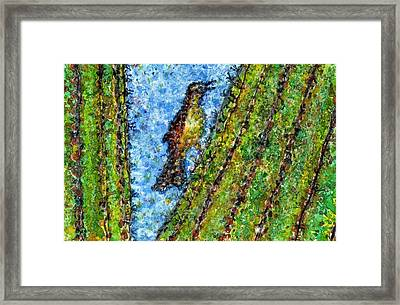 Saguaro Cactus With Woodpecker Framed Print by Cynthia Ann Swan