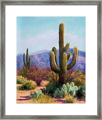 Saguaro Framed Print by Candy Mayer