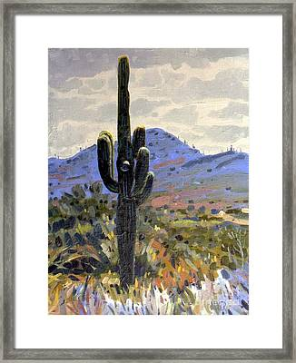 Saguaro Framed Print by Donald Maier