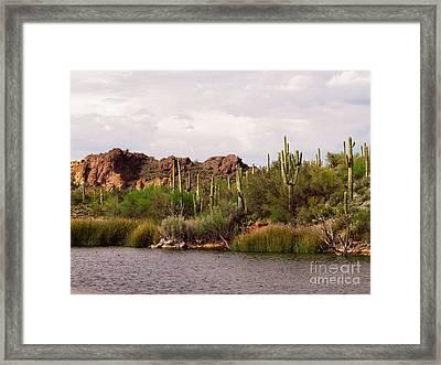 Saguaro Lake Framed Print by Marilyn Smith