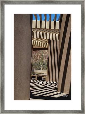 Saguaro National Park Framed Print by Lois Bryan