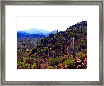 Framed Print featuring the photograph Saguaro National Park Winter 2010 by Michelle Dallocchio