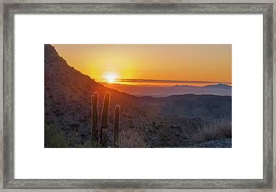 Saguaro Sunrise Framed Print