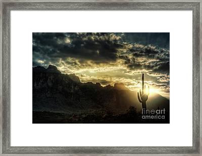 Saguaro Sunrise  Framed Print by Saija  Lehtonen