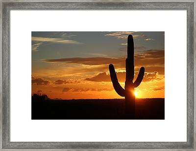 Saguaro Sunset Framed Print