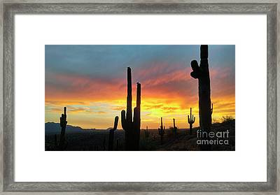 Framed Print featuring the photograph Saguaro Sunset by Anthony Citro