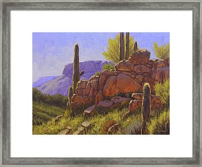 Saguaro Sunshine Framed Print