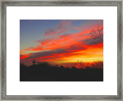 Saguaro Winter Sunrise Framed Print