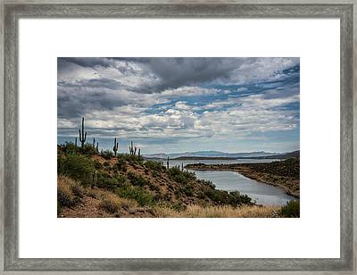 Framed Print featuring the photograph Saguaro With A Lake View  by Saija Lehtonen