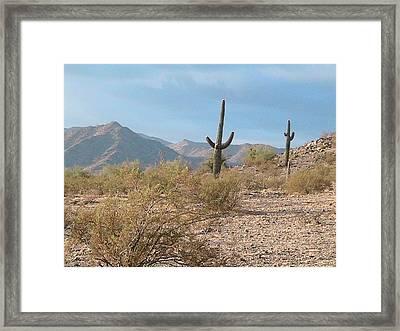 Saguaros On A Hillside Framed Print