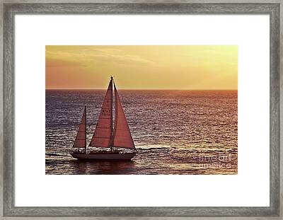 Sail Away Framed Print by Maria Arango