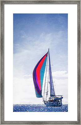 Framed Print featuring the photograph Sail Away by Scott Kemper