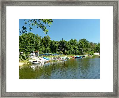 Sail Boats At Rest Framed Print by Donald C Morgan