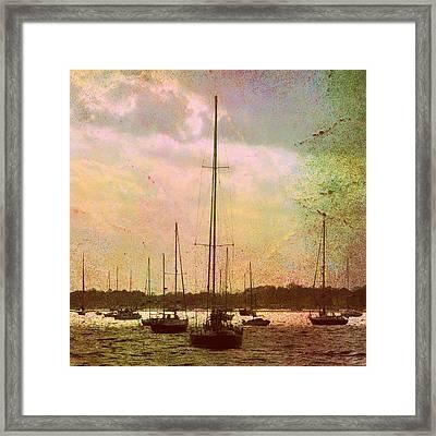 Sail Boats Framed Print by Brandi Fitzgerald