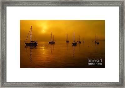 Sail Boats In Fog Framed Print by Trena Mara